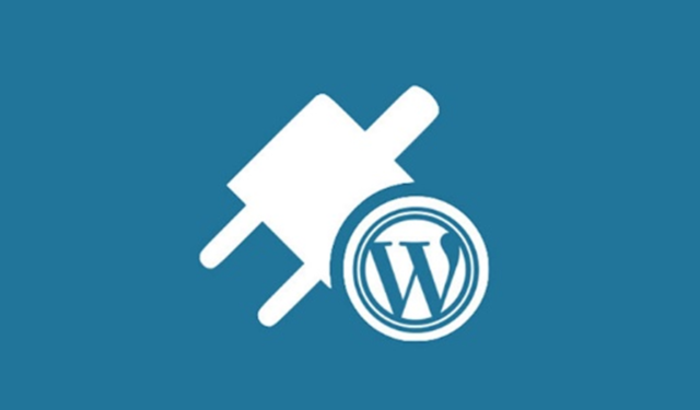 5 Plugins small business should have on their WordPress website and why?