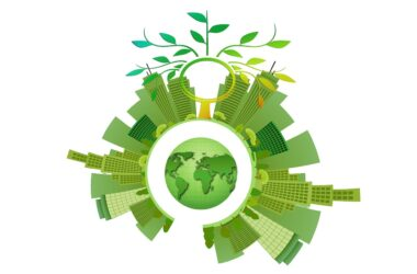 Why Sustainability is Valuable in eCommerce Operations